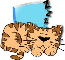 book-sleeper